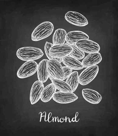 아몬드 그림의 분필 스케치입니다.