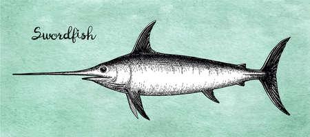 Dibujo tinta de pez espada aislado sobre fondo azul. Ilustración de vector