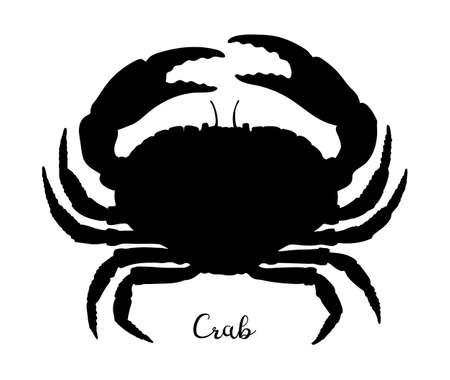 Silhouette of brown crab isolated on white background. Hand drawn vector illustration of cancer pagurus. Retro style.