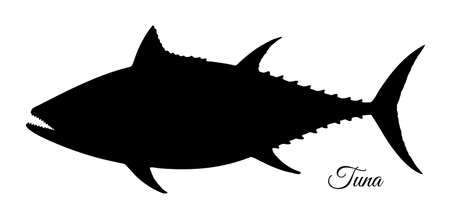 Silhouette of tuna. Hand drawn vector illustration of fish isolated on white background. Retro style.