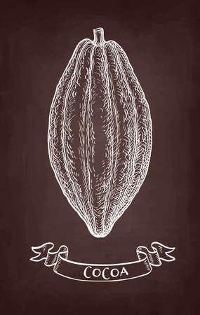Cocoa pod. Chalk sketch on blackboard background. Hand drawn vector illustration. Retro style. Векторная Иллюстрация