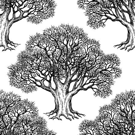 Seamless pattern. Ink sketch of oak without leaves. Winter tree. Hand drawn vector illustration. Retro style. Vettoriali