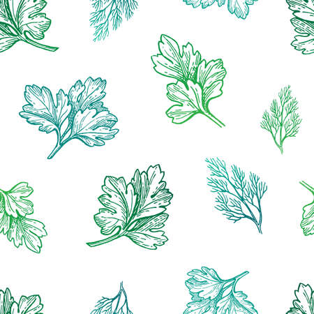 Seamless pattern with herbs. Hand drawn vector illustration. Standard-Bild - 126311364