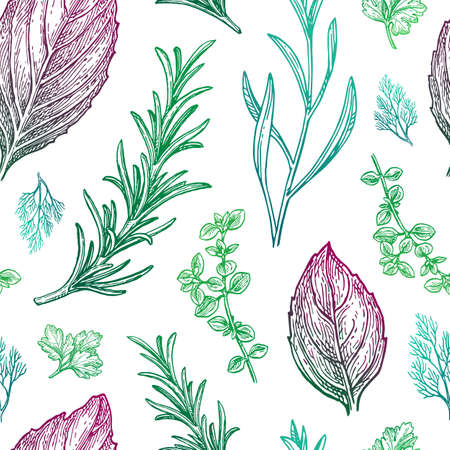 Seamless pattern with herbs. Hand drawn vector illustration.