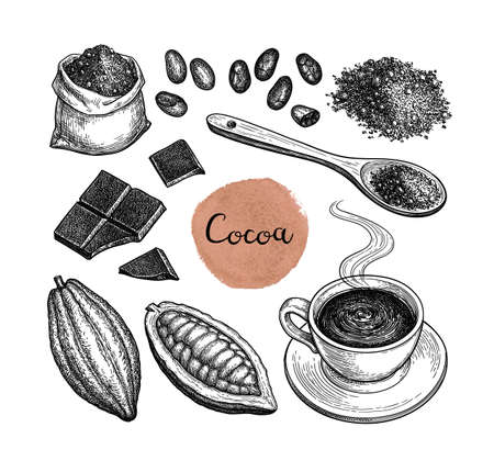 Cocoa and chocolate set. Ink sketch isolated on white background. Hand drawn vector illustration. Retro style. Standard-Bild - 124781219