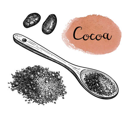 Ink sketch of cocoa powder. Stock Illustratie