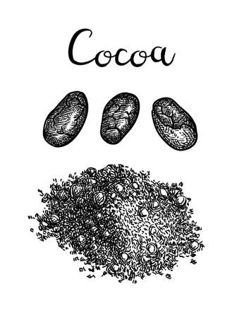 Ink sketch of cocoa powder. Standard-Bild - 124889408