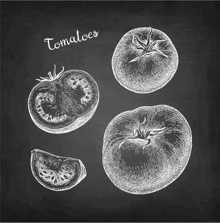 Chalk sketch of tomatoes on blackboard background. Hand drawn vector illustration. Retro style. Ilustrace