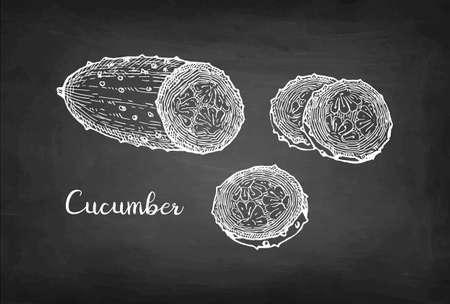Chalk sketch of cucumber.