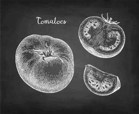 Chalk sketch of tomatoes on blackboard background. Hand drawn vector illustration. Retro style. Иллюстрация