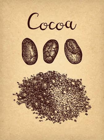 Ink sketch of cocoa powder. Çizim