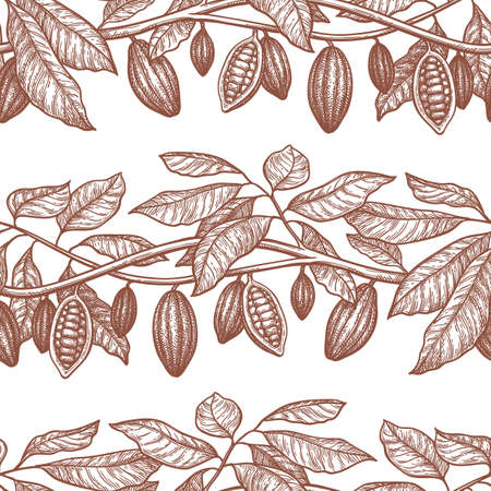 Seamless pattern with cocoa. Branches and pods. Hand drawn vector illustration. Retro style ink sketch .