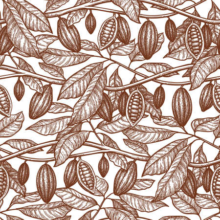 Seamless pattern with cocoa. Branches and pods. Hand drawn vector illustration. Retro style ink sketch . 写真素材 - 123993559