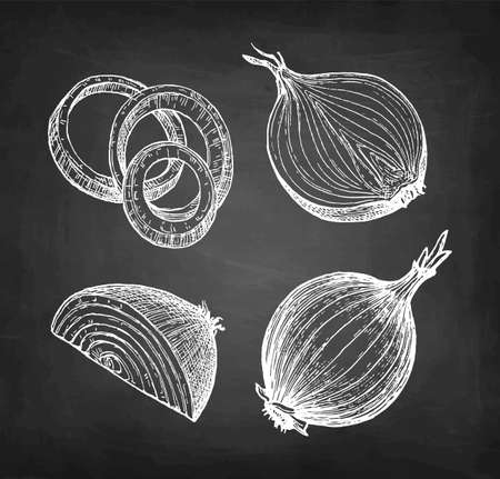 Chalk sketch of onion Illustration