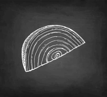 Chalk sketch of onion on blackboard background. Hand drawn vector illustration. Retro style.