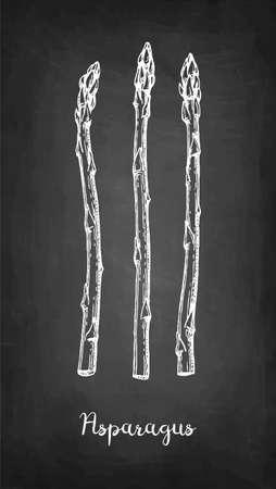 Croquis à la craie d'asperges sur fond de tableau noir. Illustration vectorielle dessinés à la main. Style rétro.