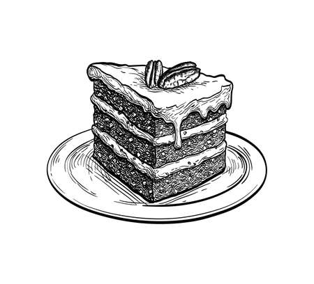 Ink sketch of carrot cake Illustration
