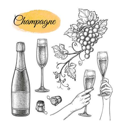 Conjunto de bocetos de champán. Ilustración de vector