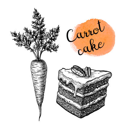 Ink sketch of carrot cake. Illustration