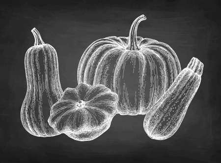 Ink sketch of squashes. 免版税图像 - 149342433