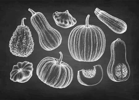 Pumpkins big set 免版税图像 - 149342443