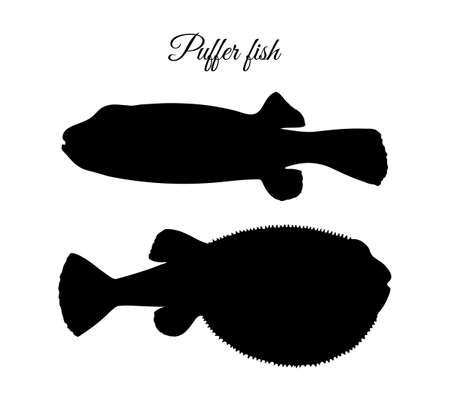 Silhouette of fugu fish.