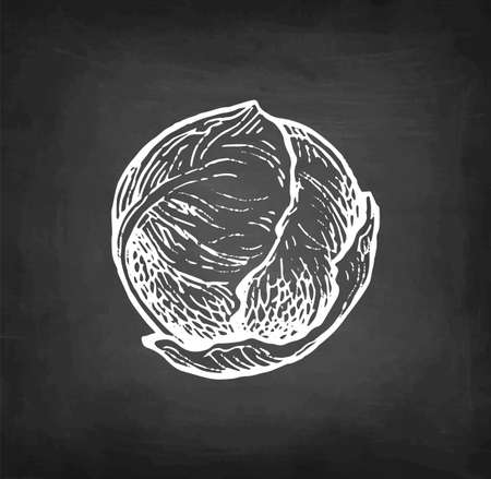 Chalk sketch of brussel sprout