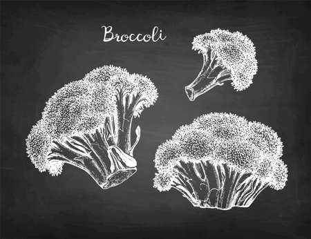 Chalk sketch of broccoli.