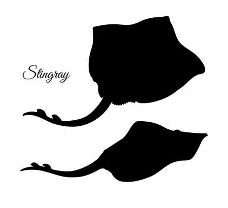 Silhouette of stingray