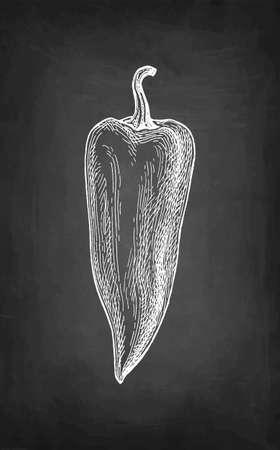 Chalk sketch of long bell pepper.