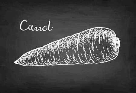 Chalk sketch of carrot.