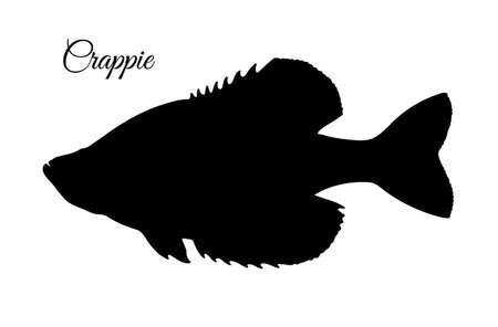Crappie fish silhouette