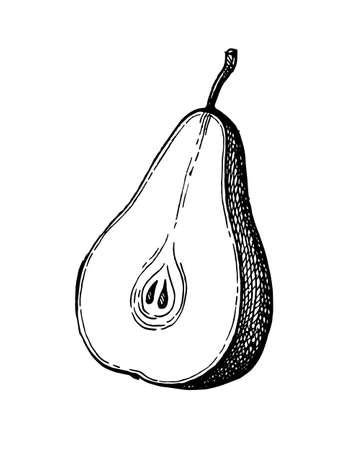 Ink sketch of pear.