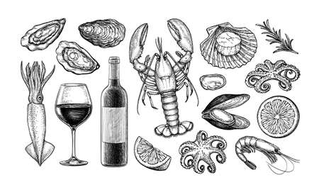 Ink sketch set of wine and seafood.