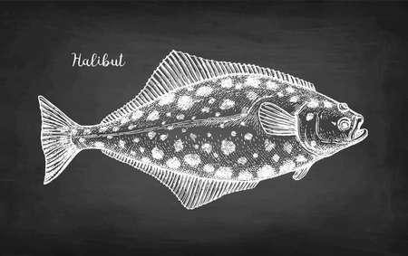 Chalk sketch of halibut.
