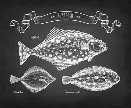 Chalk sketch of flatfish