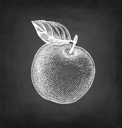Chalk sketch of apple.