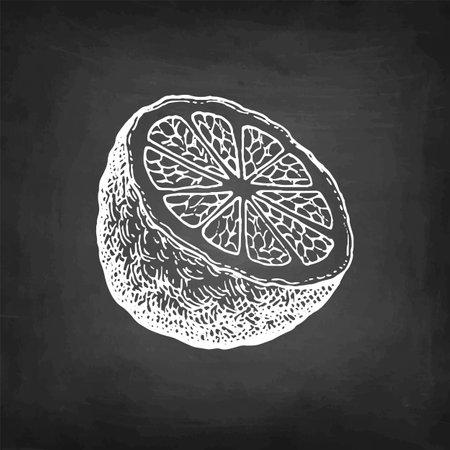 Chalk sketch of bergamot orange