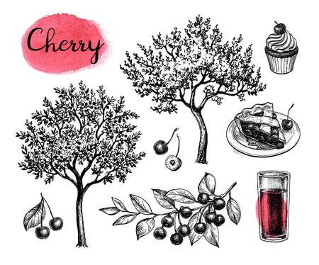 Cherry big set. Illusztráció