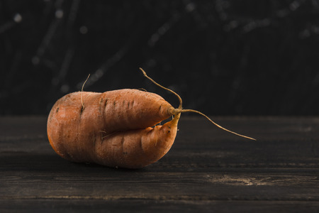 Ugly vegetable carrot with sprouts on a dark wooden natural background