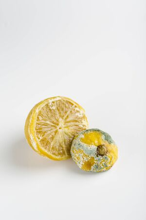 ugly lemon with mold on white background closeup isolated with copyspace