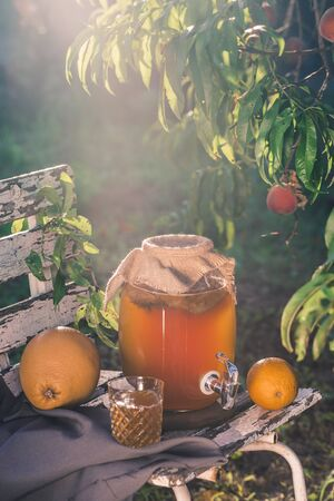 Kombucha tea drink with beneficial bacteria on wooden chair under Sunny evening light side view with copyspace 免版税图像 - 126432630