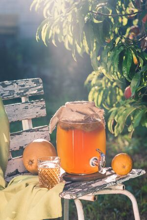 Kombucha tea drink with beneficial bacteria on wooden chair under Sunny evening light side view with copyspace