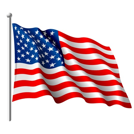 usa patriotic: Flag of the USA