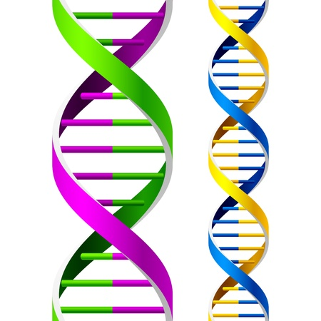 Seamless DNA Strands Stock Vector - 9690151