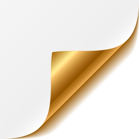 Gold curled corner  Vector