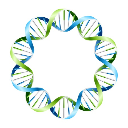 DNA Strands on circle Stock Vector - 9882099