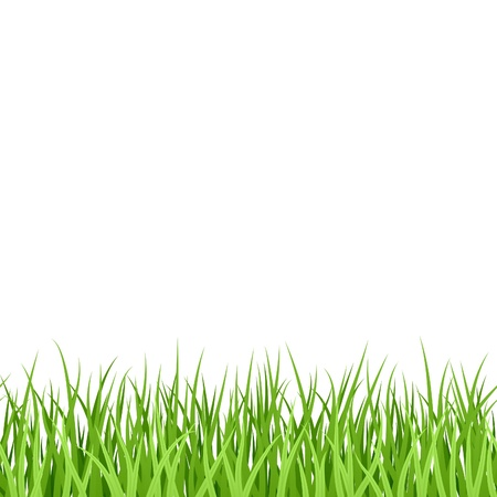 grass lawn: Green Grass. Seamless illustration.