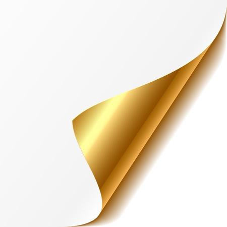 Esquina rizado Ilustración de vector