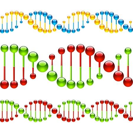 spirale dna: Filamenti di DNA. Illustrazione senza soluzione di continuit�.